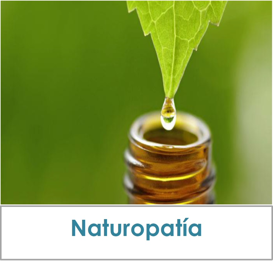 inicio_naturopatia16