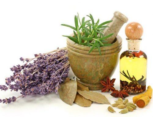 Plantas y sus propiedades fitoterapeuticas