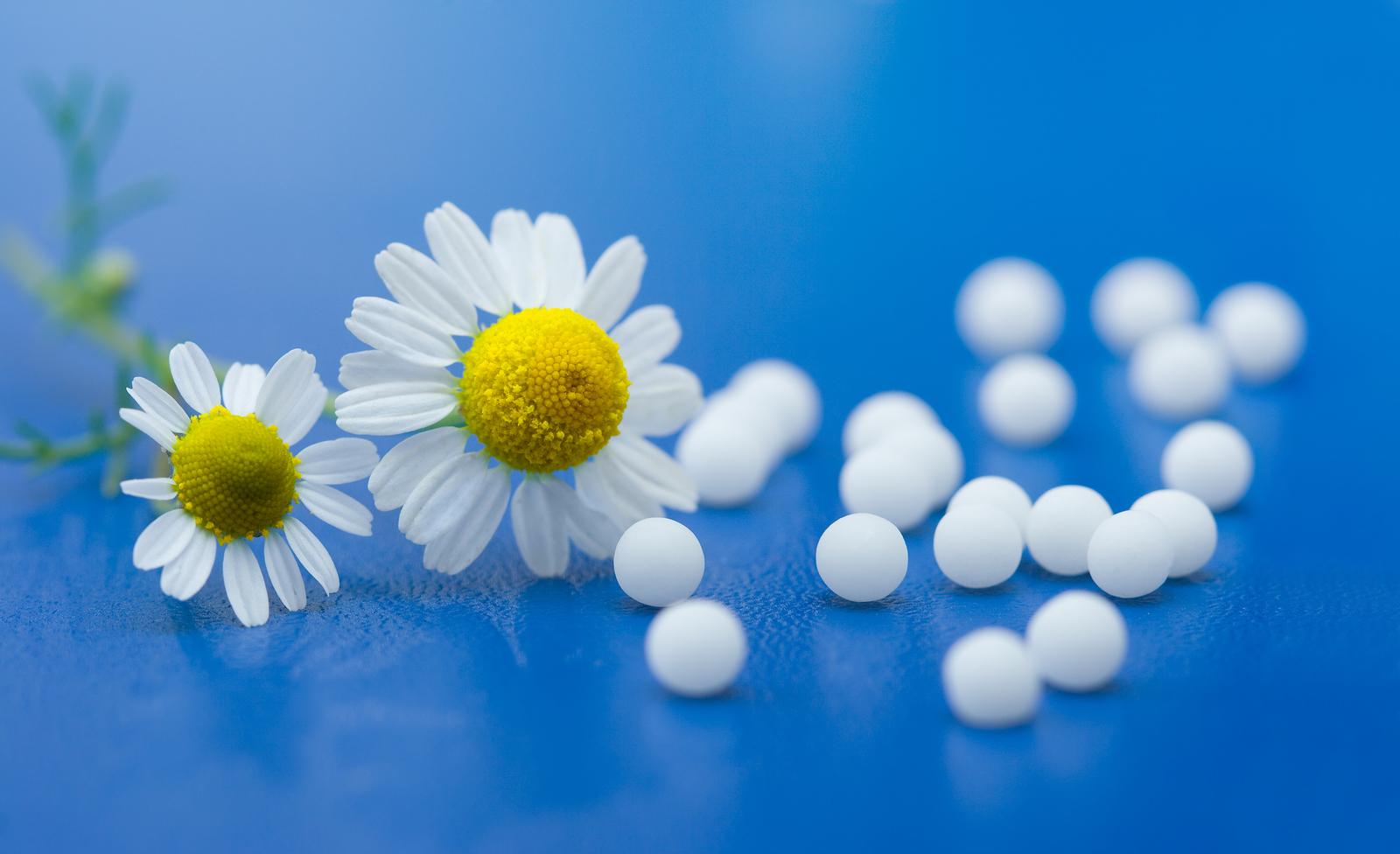 homeopatia-para-tu-consulta